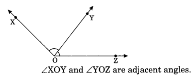 Lines and Angles Class 7 Notes Maths Chapter 5. 10