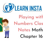 Playing with Numbers Class 8 Notes