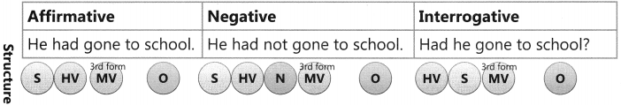 Present Tense Exercise for Class 6 CBSE 8