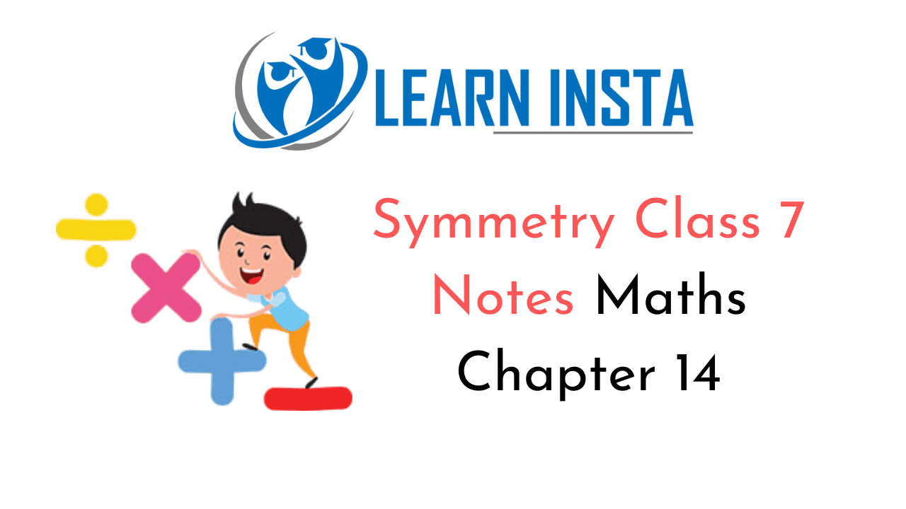 Symmetry Class 7 Notes
