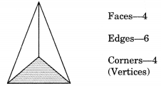 Visualising Solid Shapes Class 7 Notes Maths Chapter 15 .5
