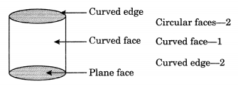 Visualising Solid Shapes Class 7 Notes Maths Chapter 15 .7