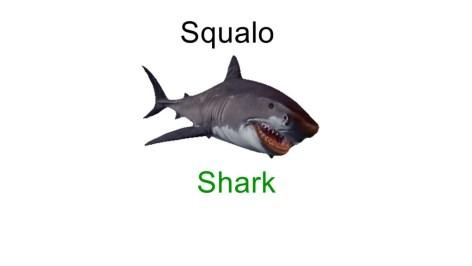 Shark in italian