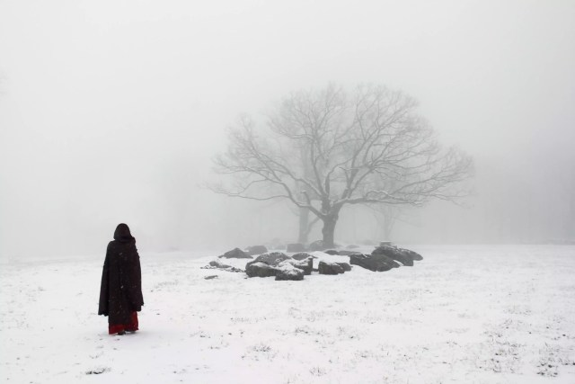 Figurină cu copac și copac în zăpadă