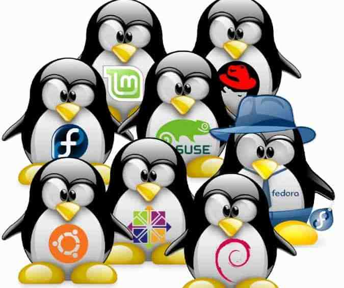 Decide which linux to use in 1 minute or less