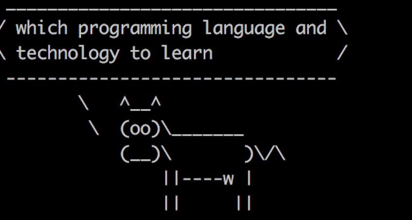 Which programming language or technology to learn.