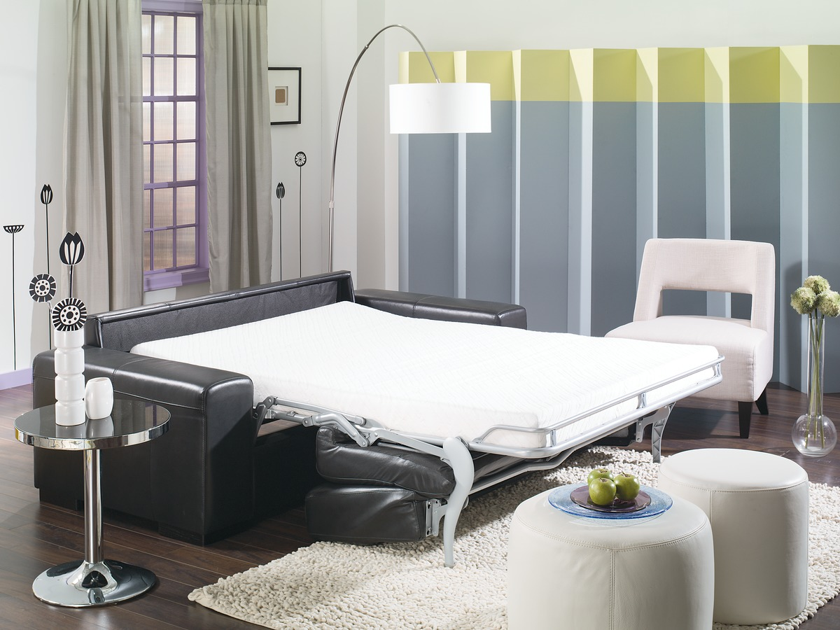 Weekender Leather Sleeper Leather Express Furniture