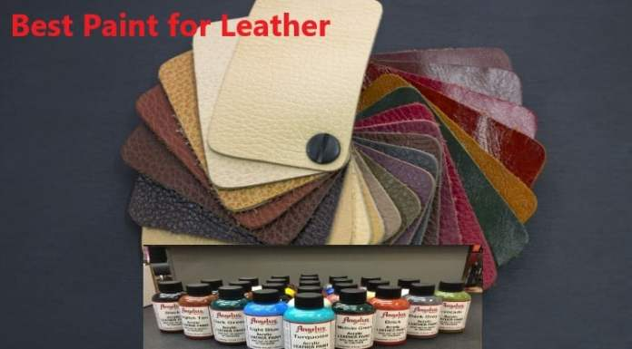 Best Paint for Leather