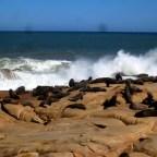 Cabo Polonio & Punta del Diablo