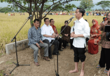 4 Hal Kecil Ini Bukti Kalau Jokowi Memang Presiden Luar Biasa