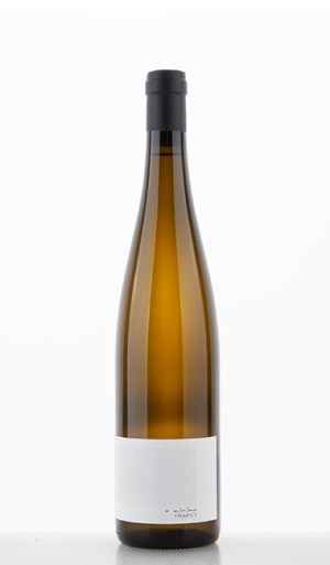 A Minima blanc 2019 - Trapet Alsace