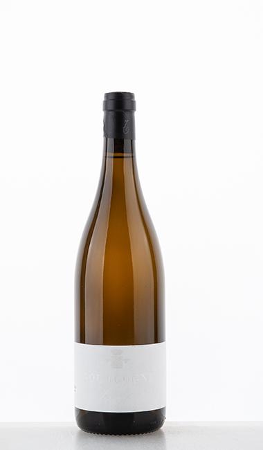 Bourgogne blanc 2019 - Trapet Père & Fils