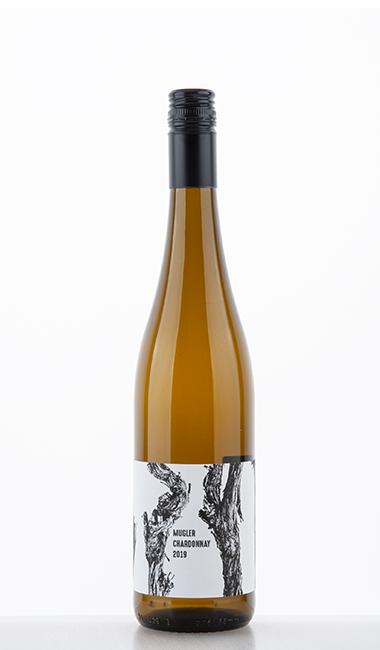 Chardonnay 2019 - M. Schädler - Steffen Mugler