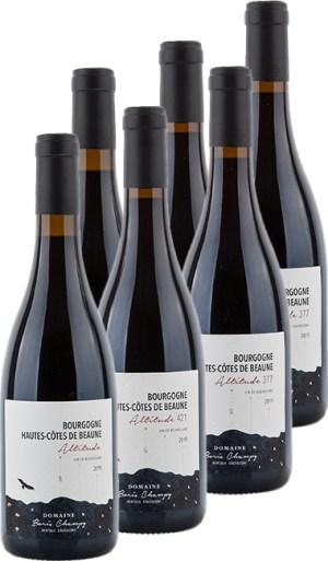 Probierpaket Boris Champy Hautes-Côtes de Beaune rouge 2019 –  Probierpaket