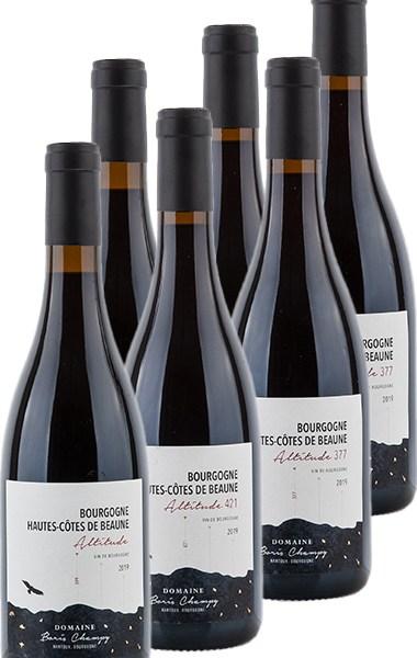 Boris Champy Hautes-Côtes de Beaune rouge 2019 tasting package - Tasting package
