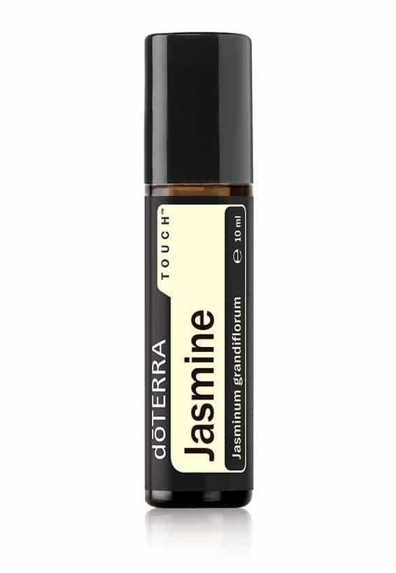 Jasmine Touch® Jasminum grandiflorum
