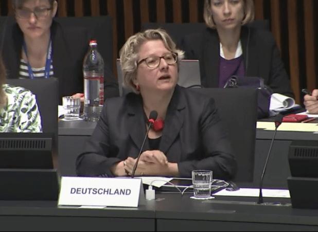 Bundesumweltministerin Svenja Schulze im EU-Umweltministerrat