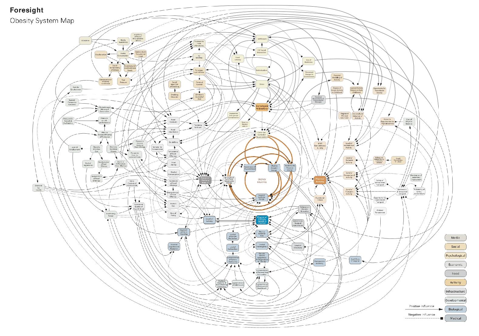 """Die """"Obesity Map"""""""