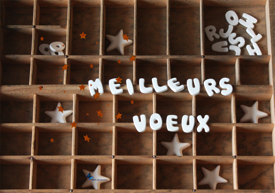 Carte_voeux_v2_cuivre logo