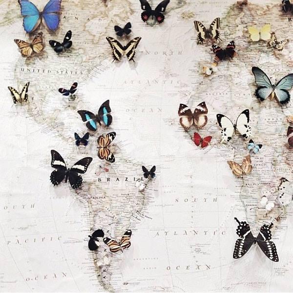 papillons-deco