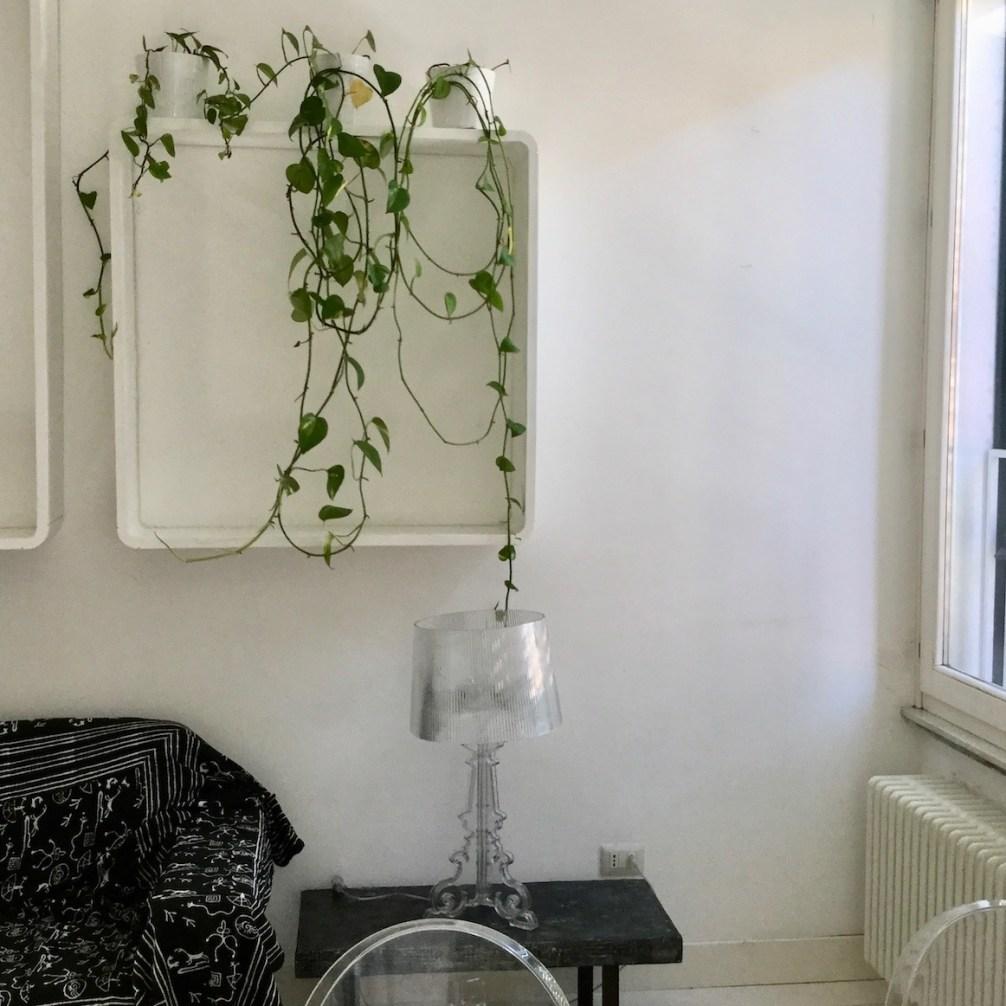 etagere-plante-idee-deco-salon