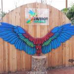 Parrot World : nouveau parc animalier immersif en Seine et Marne