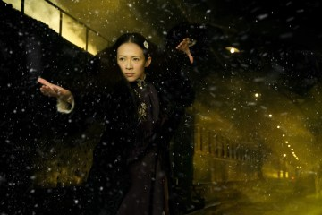 Photo du film The Grandmaster