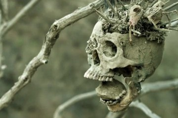 "Image tirée du film ""Bone Tomahawk"""