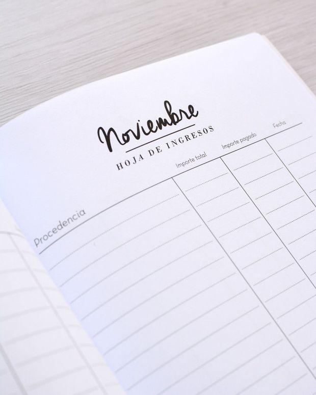 Cuaderno finanzas - Detalle - Noviembre hoja de ingresos (optimizado web)