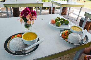 Repas végétarien, Vatia Beach