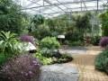 Cultiver des plantes en intérieur