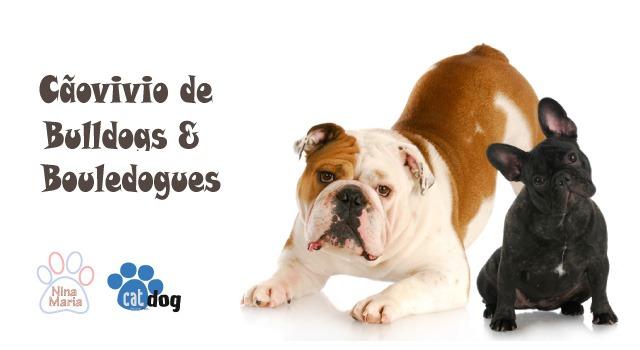 Cartaz Cãovivio de Bulldogues e Bouledogues.