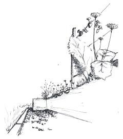 02-esquisse-créer-jardin-française