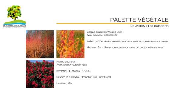 08-APD-palette-vegetale-paysagiste