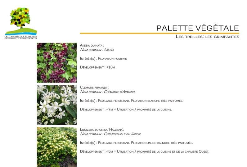 10-APD-palette-vegetale-jardin