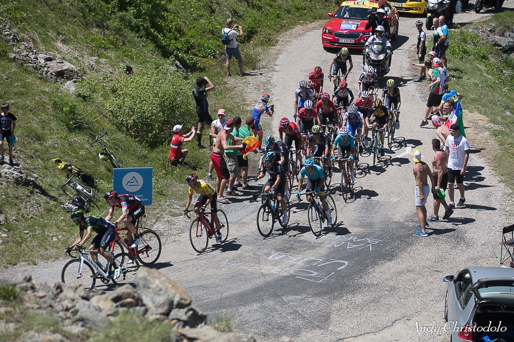 the peleton of the Dauphine