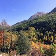 Explosion de couleurs dans les Alpes françaises ...