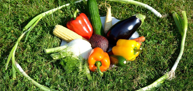 Viel Gemüse, Obst uns Milchprodukte