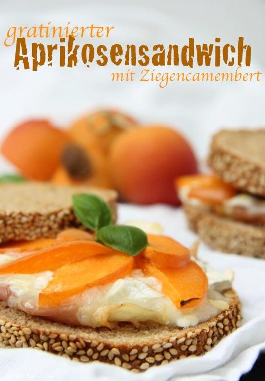 wpid-Aprikosen-Sandwich_2-2013-07-24-07-00.jpg