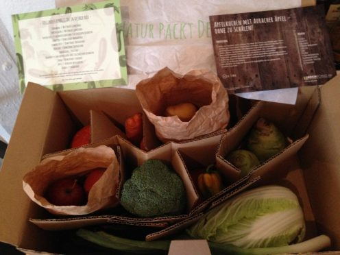 #Gemüseretterbox Nr. 2