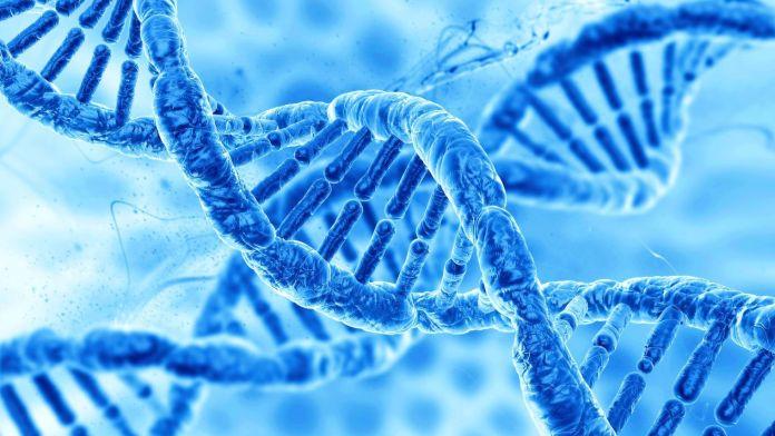 Dubai Genomics