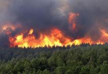 incendie-tabouna-