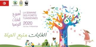 semaine des forêts tunisiennes