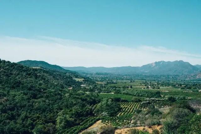 Miglior Vino California