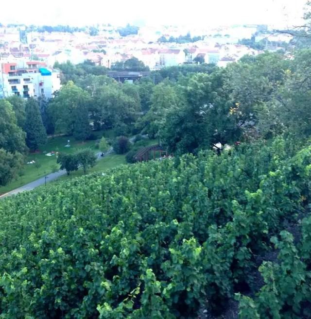 Praha Vinohrady