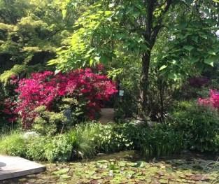 giardino-botanico-gardone