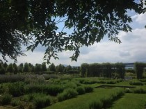 Reggia di Venaria giardini