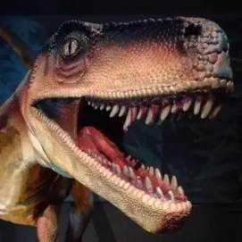 dinosauri-giganti-dall-argentina-mudec-15