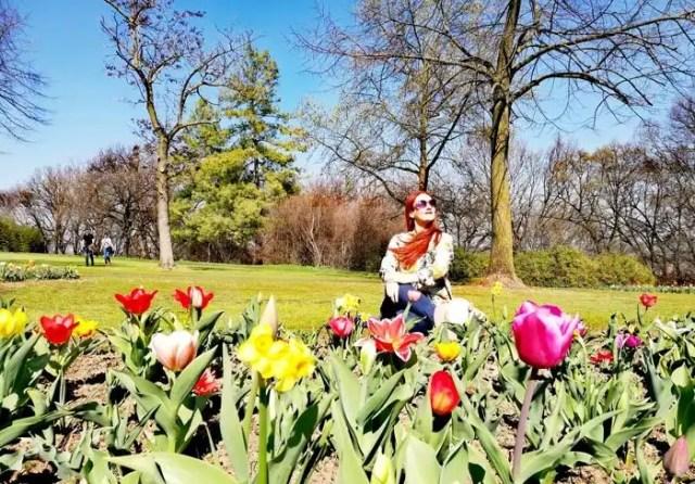 Parco Sigurtà Tulipani