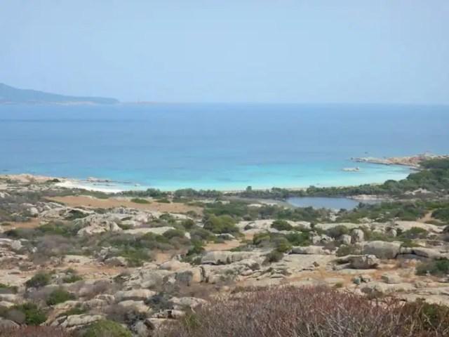 Isola dell'Asinara,, sardegna